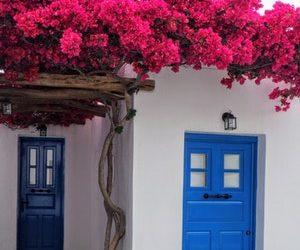 blue theme life interiors